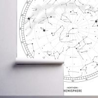 Wallpaper Constellations,Black and White,      Signs of Zodiac,Graphic,    Wall Mural,Vinyl or Self Adhesive