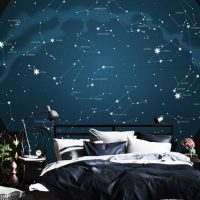 Wallpaper Stars,Constellations,Signs of Zodiac,       Night Sky,Dark Blue with Silver,    Wall Mural,Vinyl or Self Adhesive