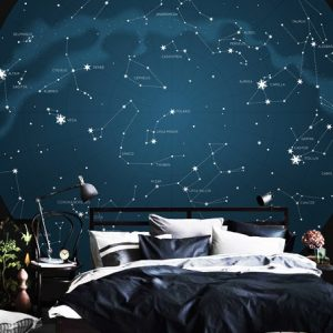 Wall mural wallpaper Constellations,Signs of Zodiac removable decals peel and stick self adhesive blur with silver planet art mural night